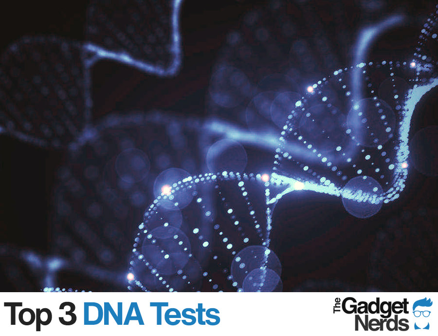 Best DNA Tests