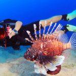 underwater-cameras